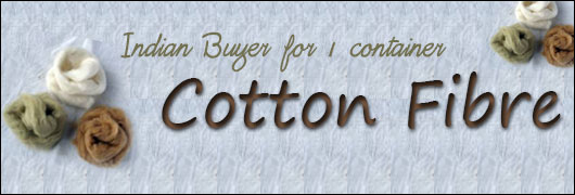 Indian Buyer for 1 container cotton Fibre