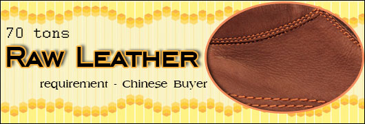 70 tons raw leather requirement - Chinese Buyer