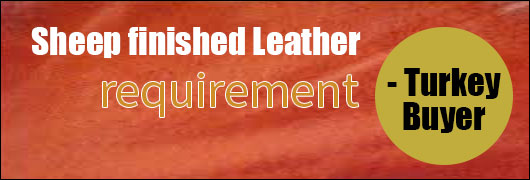 Sheep finished Leather requirement- Turkey Buyer