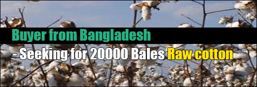 Buyer from Bangladesh - Seeking for 20000 Bales Raw cotton