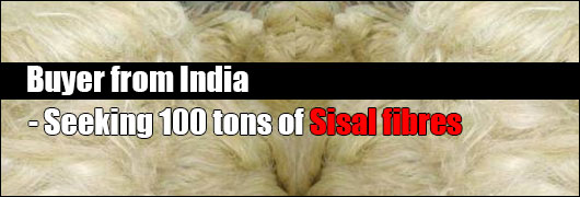 Buyer from India - Seeking 100 tons of Sisal fibres