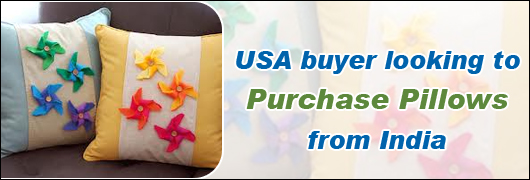 USA buyer looking to purchase Pillows from India