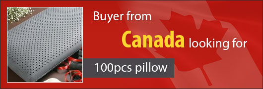 Buyer from Canada looking for 100pcs pillow