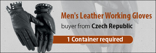 Mens Leather Working Gloves buyer from Czech Republic 1 Container required