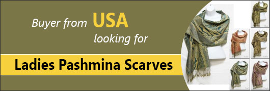 Buyer from USA  looking for Ladies Pashmina Scarves