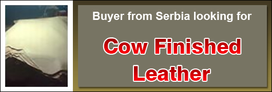 Buyer from Serbia looking for Cow Finished Leather