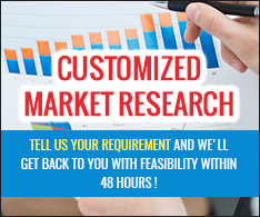 Customize Market Research Report