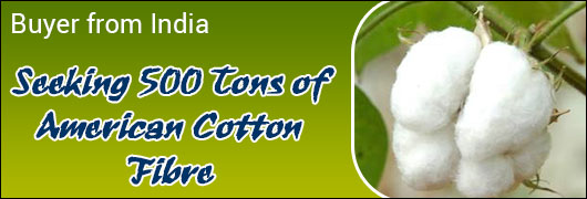 Buyer from India Seeking 500 Tons of American Cotton Fibre