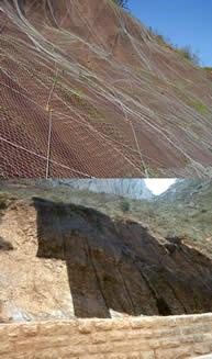 Studies on Biodegradable Geomesh for Erosion Control