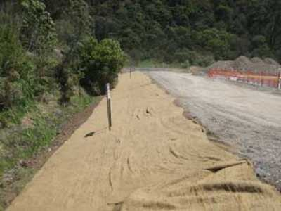 Influence of in-situ parameters on serviceability of jute geotextiles in unpaved roads