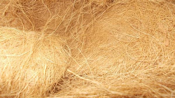 coir coconut fibre buyers coir coconut fibre. Black Bedroom Furniture Sets. Home Design Ideas
