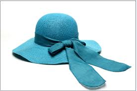 Hat:Straw, Blue / Green