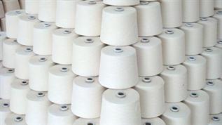 Greige, Weaving, 16/1, 95% Cotton / 5% Spandex