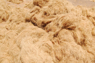 coir fibre used for industrial purpose