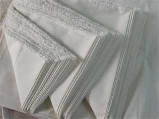 Polyester Fabric:170 gsm, 100% Polyester, Greige, Plain