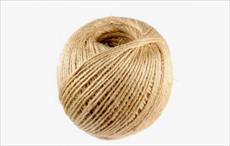 N Andhra jute industry seeks government support