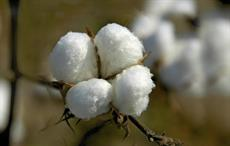 China's cotton imports down 39% in 2016