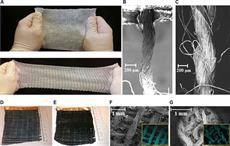 Textile actuators manufacturing. Courtesy: Science Advances