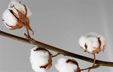 US Upland cotton price for week beginning March 3