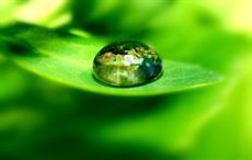 MEC, Vancouver Aquarium partner for microplastic study