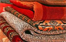 CBEC for speedy examination of carpets for composition