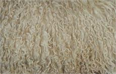 British Wool acquires KWG wool handling operation