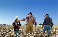 Courtesy: Cotton USA