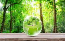 Lenzing to evaluate sustainability scorecard of suppliers