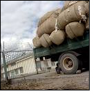 KCC&I suspends cotton trading in Karnataka