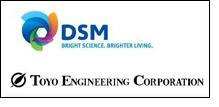 royal dsm n v information technology enabling