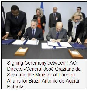 UN+Brazil: South-South alliance to support cotton farmers