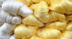India's Jharkhand set to boost its silk output
