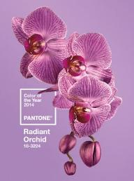 Pantone unveils captivating 'Purple' as colour of 2014