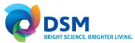 Royal DSM EBITDA increases 20% in 2013