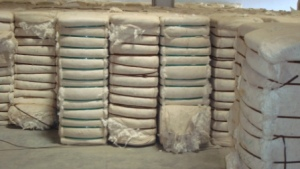 Pakistan cotton ginneries receive 13.1mn bales by Feb 1