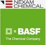 BASF & Nexam commercialize new crosslinkable Nylon 66
