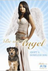 Chaitanya Rao designs angel ensemble for Trisha's PETA ad