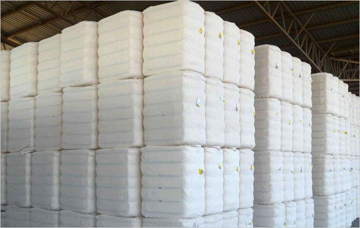 Weak Chinese demand impacts Australian cotton export
