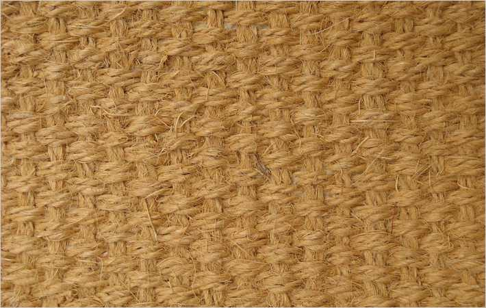 Bangladesh PM confers agricultural status on jute