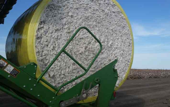 APDN Completes DNA Marking of 10,000 Bales of American Pima Cotton