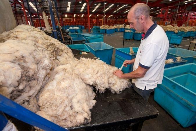 British Wool Marketing Board seeks new County members