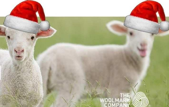 Aussie wool prices remain strong and stable