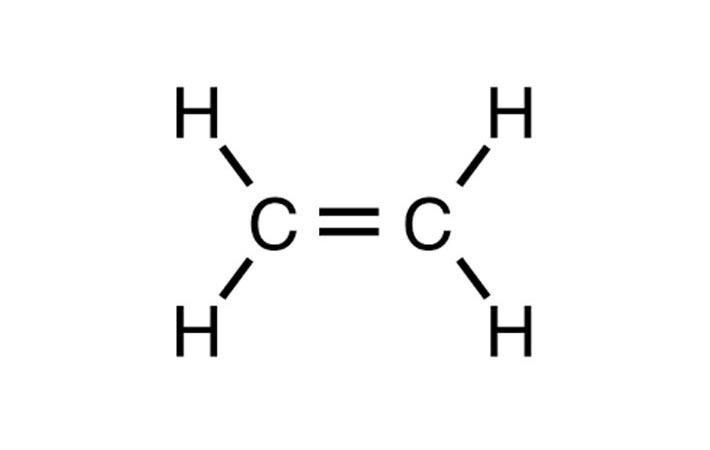 Europe : European ethylene prices decline last week