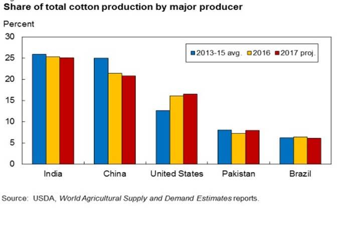 cotton growing areas in india