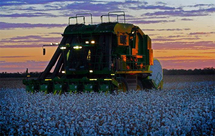 Courtesy: cotton Australia
