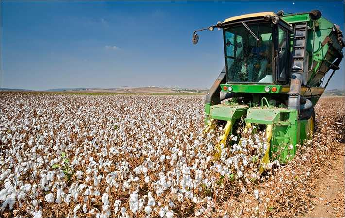 US National Cotton Council hails tax reforms bill passage