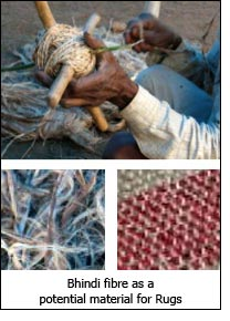 Bhindi fibre as a potential material for Rugs