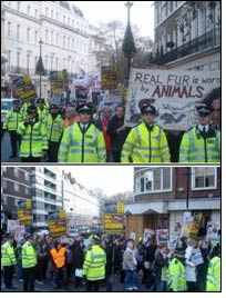 250+ march against fur in London