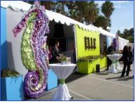 Havaianas-Elle to host ultra chic lounge at Independent Spirit Awards