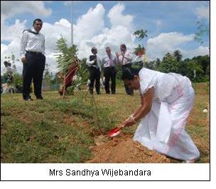 Mrs Sandhya Wijebandara
